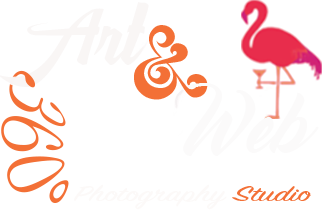 Arteweb360